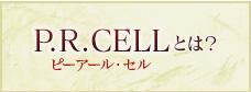 P.R. CELL(ピーアール・セル)とは